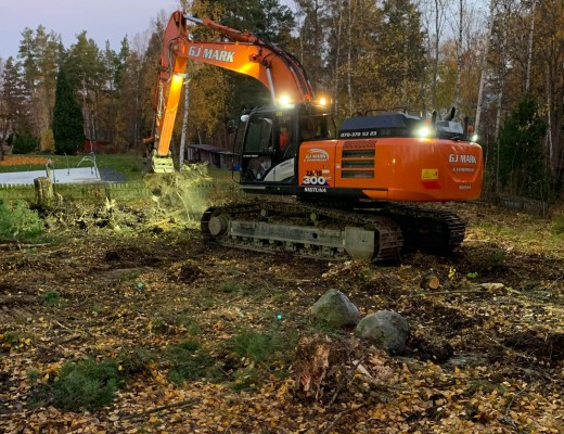 Trädfällning-och-tomtplanering-IMG_0228