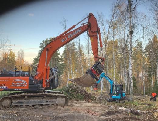 trädfällning-och-tomtplanering-IMG_0221